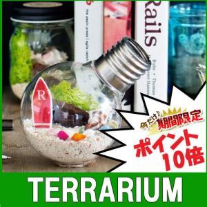 テラリウム アーバングリーンメーカーズ テラリウムキット 観葉植物 プレゼント ギフト ガラス瓶 おしゃれ テラリウム|craseal