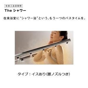 在来工法浴室用 Theシャワー イスあり(腰ノズル付)タイプ 壁接続  浴室内接続  Panasonic ザシャワー Panasonic パナソニック シャワー浴 craseal