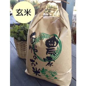 玄米10kg 石川ファーム 自然栽培米/無農薬の商品画像