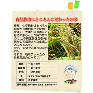 玄米10kg 石川ファーム 自然栽培米/無農薬の詳細画像2