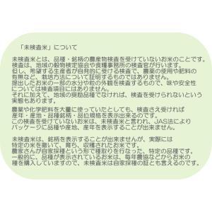 玄米10kg 石川ファーム 自然栽培米/無農薬の詳細画像5