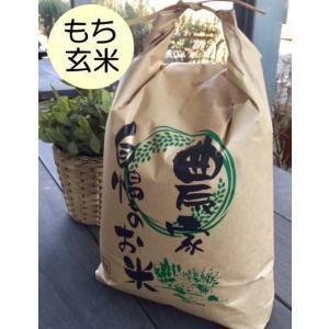 石川ファーム 自然栽培米 はぜかけ・もち玄米10kg /無農...