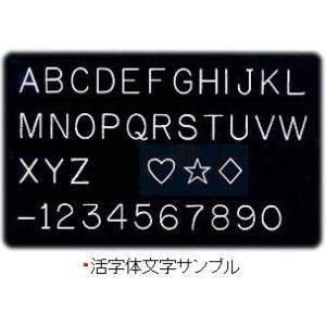 【刻印無料】ラパポート聴診器 マルチスコープ No.141 (日本ケンツメディコ社製) |create|05