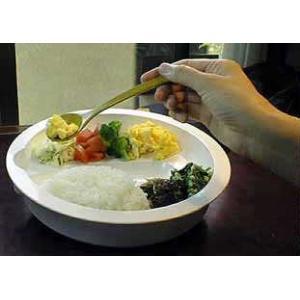 介護用食器 1皿(フタ付き)|create|05