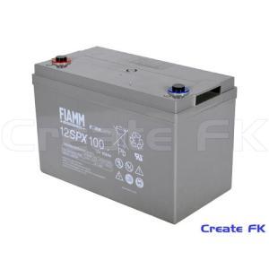 12SPX100 FIAMMバッテリー