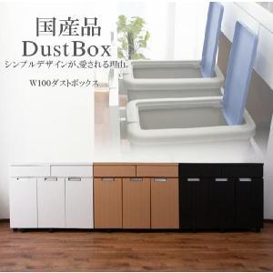 ダストボックス キッチンカウンター ステンレス 完成品|creation-style
