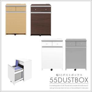 キッチンカウンター 幅55cm ダストボックス 26リットル2個付き カウンター下収納|creation-style