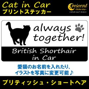 ブリティッシュ・ショートヘア british shorthair in Car ステッカー プリントタイプ 【Cat in Car キャット インカー 猫 シール デカール】|crescent-ss