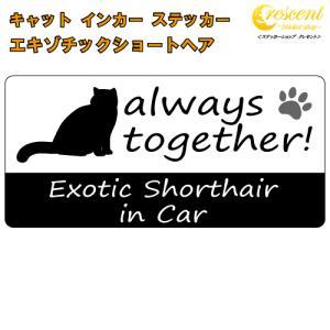エキゾチックショートヘア exotic shorthair in Car ステッカー プリントタイプ 【Cat in Car キャット インカー 猫 シール デカール】|crescent-ss