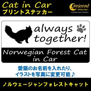ノルウェージャンフォレストキャット norwegian forest cat in Car ステッカー プリントタイプ 【Cat in Car キャット インカー 猫 シール デカール】|crescent-ss