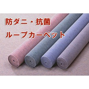 清潔 防炎・防ダニ 6帖ループカーペット 261×352 限界|crescent