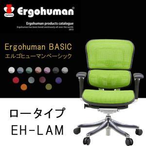 Ergohuman Basic エルゴヒューマンベーシック ロータイプ EH-LAM  pt10 クーポン除外品|crescent