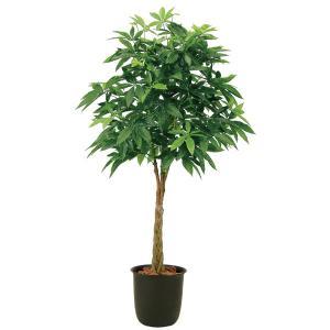 光触媒観葉樹木 パキラボール  高さ190cm|crescent