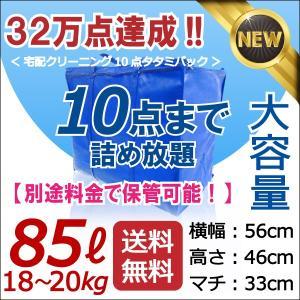 青10点タタミ 「せんたくパック 10(85リットル)」【別...