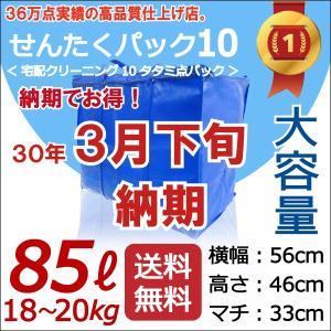 【300個限定!】3月下旬にお届け!【青10点・3月下旬納期...