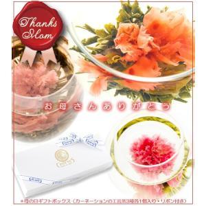 [2017母の日限定] カーネーションのお花が咲く工芸茶3種...