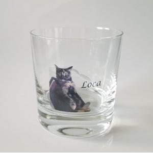 フルカラーグラス  ドイツ製グラス プレゼント 記念品 ギフト 名入れ ペット メモリアル 写真 オーダーメイド ラージェロップグラス 愛猫 crossmindsnet
