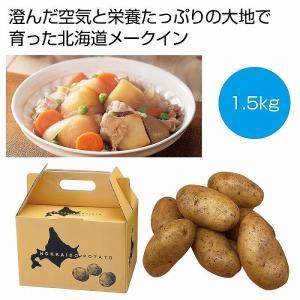 ケース販売のみ・16箱単位でご注文下さい 北海道産メークイン1.5kg  ・送料無料 ・粗品/販促品に最適!|crossshop2