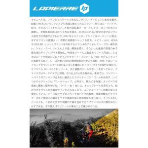 LAPIERRE(ラピエール) 2017モデル AIRCODE SL Ultimate FDJ サイズ55(180-185cm)フレームセット ロードバイク|crowngears|03