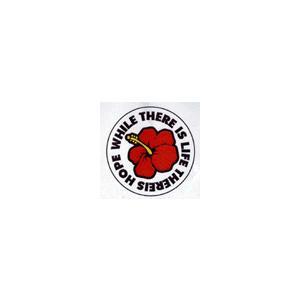 全24種類!!ことわざステッカー#PS049-068 / ステッカー デカール シール ヘルメット バイク 車 携帯電話 スーツケース 通販 キャラクター ロゴ 文字 英語 ア crowracing2