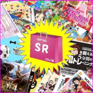 ★クリスマスリボン付ギフトバッグ★福SR袋 即納 新品 2DS/3DSソフト+アクセサリー10点セッ...