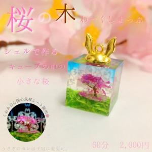 【店舗WSレシピ】桜の木|crystal-aglaia