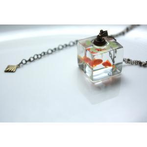 水草観察機【和金】|crystal-aglaia