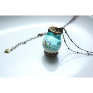 雫型観察機【ボブサンウミウシ】|crystal-aglaia