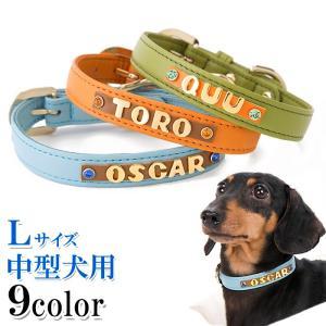 犬の首輪 犬首輪 小型犬中型犬用 名前入り首輪カシメ Mサイズ