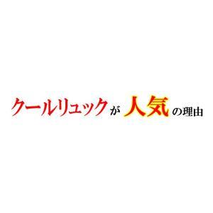 熱中対策 暑さ対策 冷却ベスト COOLRUCK クールリュック|csf-yamamoto|02