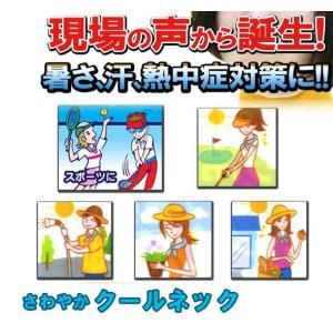 夏の熱中症対策に!!冬の防寒対策に!!万能【さわやかクールベルト】|csf-yamamoto