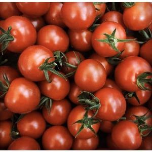 松岡農園 プリンス トマト 1kg  全国送料無料|csidoabata