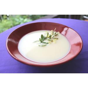 福来鳥 大根スープ ザsoup大根 250g 6枚セット|csidoabata