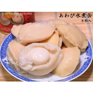 あわび水煮缶詰8粒 ゴールドプリンス|ctcols