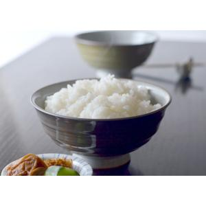 有田焼 茶碗 男飯碗 藍花 Aika お茶碗 日本製 ご飯茶碗 モダン ごはん茶碗 飯碗 おしゃれ かわいい プレゼント ギフト クッチーナ|cucina-y