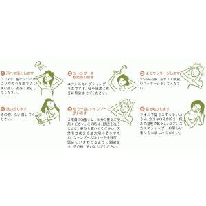 YUAN SOAP ユアンソープ 桑菊花(ソウキッカ)スカルプシャンプー 250ml (阿原 洗頭水 無添加 ノンシリコン) 【メール便不可】|cufflink|03