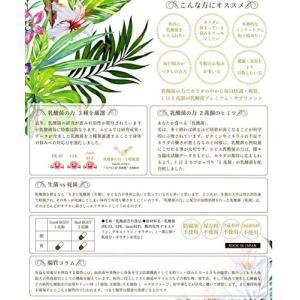 乳酸菌含有食品 乳酸菌の力〜トリプル乳酸菌20,000億個(2兆個)〜(健康補助食品) 60カプセル 日本製|curenet-shop|04