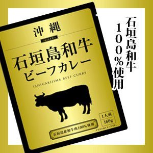 カレー 沖縄石垣島和牛ビーフカレー 中辛 currynokamisama