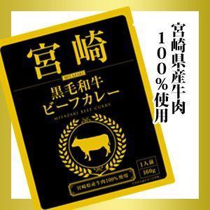 カレー 宮崎黒毛和牛ビーフカレー 甘口 currynokamisama