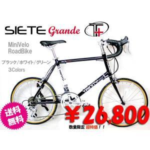 自転車 20インチ TRINITY PLUSトリニティープラス 小径車 ミニベロ SIETE-grandeアルミフレーム|cw-trinity