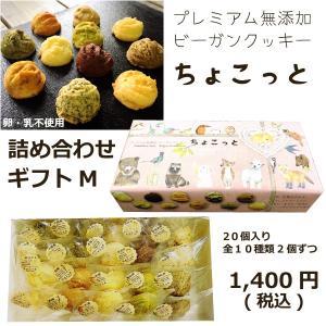 プレミアム無添加ビーガンクッキーちょこっとギフトMの商品画像|ナビ