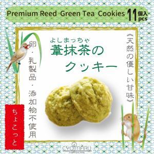 葦抹茶のクッキー【ちょこっと】11個入|cyoimaru