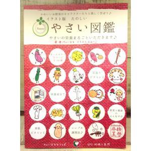 【宅配便】イラスト版たのしい野菜図鑑|cyoimaru