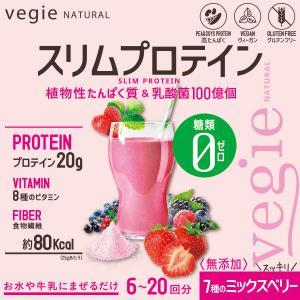 ベジエ プロテイン酵素ミルク|d-bijin