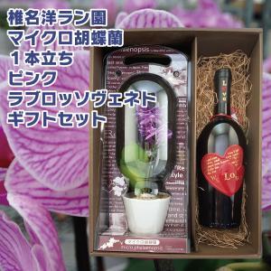 花 プレゼント ギフト マイクロ胡蝶蘭 ピンク 1本立ち ラブロッソヴェネト 750ml ギフトセット 赤ワイン ワイン ハート|d-craft