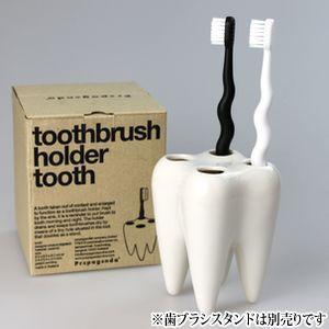 歯ブラシ デザイン歯ブラシ ゼブラシ(ホワイト&ブラック各1本x2本入り)(メール便33点まで) ポイント消化 d-fit 02