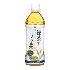 緑茶でフッ素 24本セット(500ml/本) d-fit