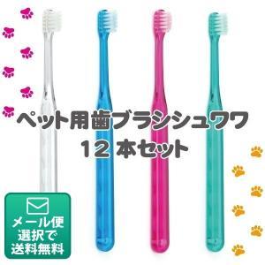 犬用歯ブラシ Ci シュワワ 4色アソート/12本セット(メール便2点まで) d-fit
