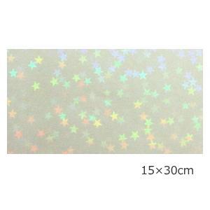 透明ホログラムシート マイクロスター 15cm×30cm|d-inform