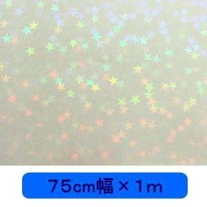 透明 ホログラムシート マイクロスター(無色) 75cm幅×1m ロール|d-inform